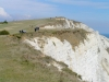 southdowns06_33