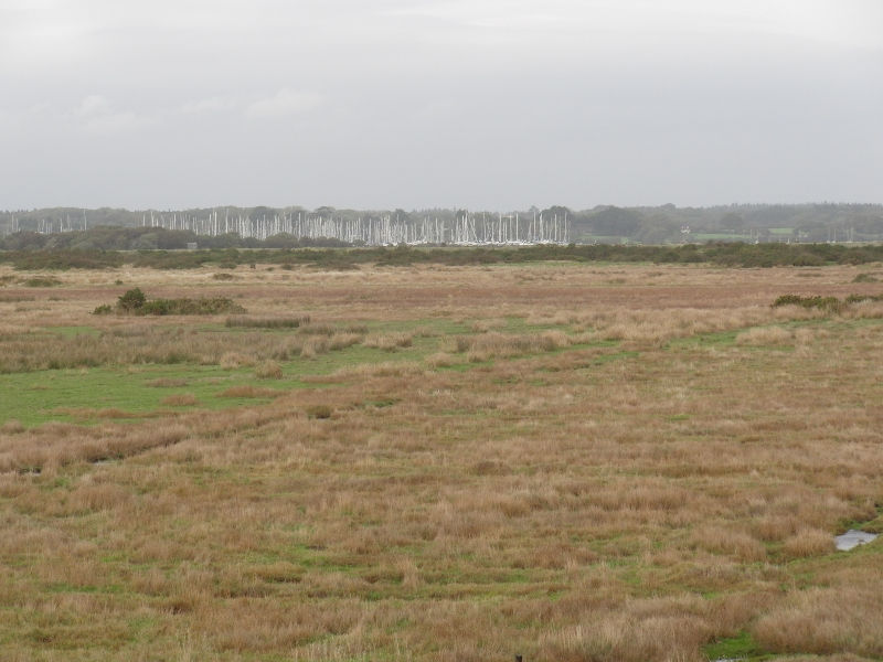 pennington-marshes-026-800x600