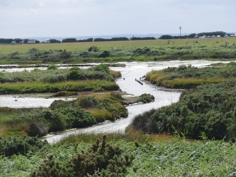 west-wittering-chichester-117