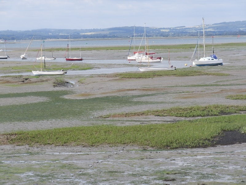 west-wittering-chichester-119