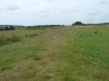 Middlebere Heath 016 (640x480)