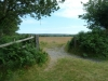 Middlebere Heath 057 (640x480)