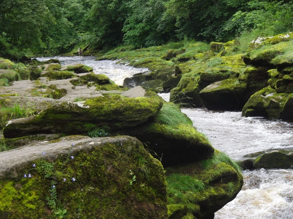 2016-07-05 Bolton Abbey Strid 003 (1024x768)