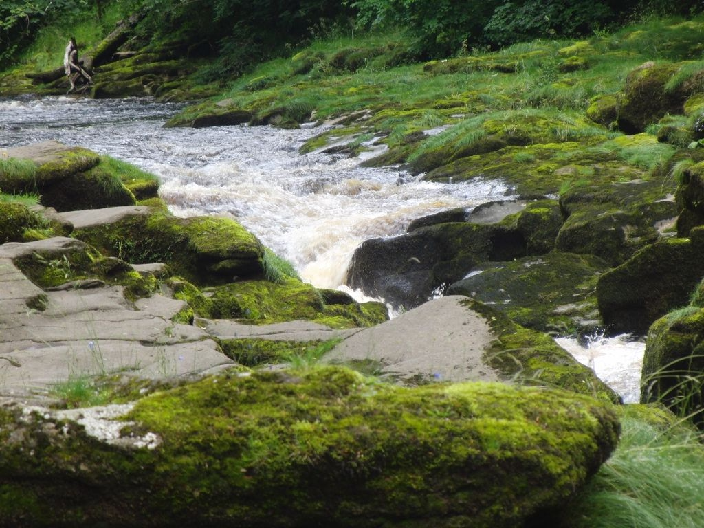 2016-07-05 Bolton Abbey Strid 004 (1024x768)