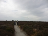 Minsmere RSPB to Dunwich Heath 095 (800x600).jpg