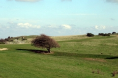 Oct 18 Ditchling Beacon