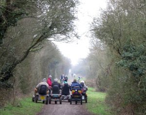 *February Regional Ramble – Down Link Section 2 – from Partridge Green