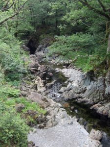 *July 19 National Ramble – Coed-y-Brenin Rivers