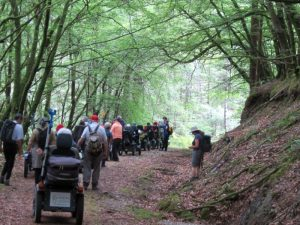 *July 19 National Ramble – Coed-y-Brenin Waterfalls