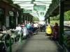 dartmoor_rambles07-081-m