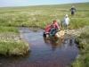 Dartmoor 2007