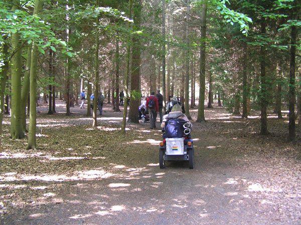 rendlesham-forest-08_04
