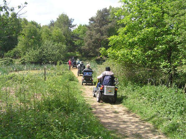 rendlesham-forest-08_09