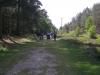 rendlesham-forest-08_13