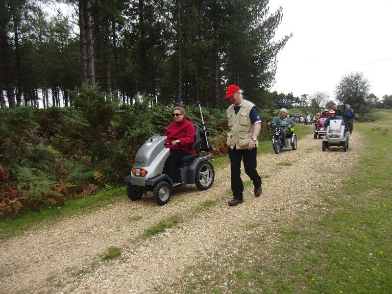 bolderwood-new-forest-031