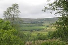2012 Gisburn Forest