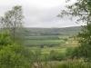 gisburn-forest-082