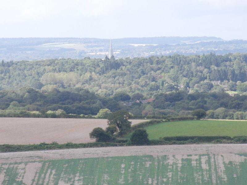 pepperbox-hill-salisbury-045
