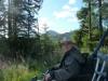 beddgelert-forest-016-800x600