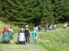 beddgelert-forest-049-800x600