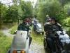 beddgelert-forest-057-800x600