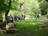 eyeworth-woods-new-forest-050