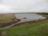 pennington-marshes-025-800x600