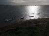 pennington-marshes-048-800x600