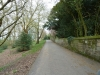 liz-shipley-country-park-009-800x600