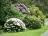 towneley-park-burnley-125-800x600