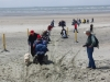west-wittering-chichester-082