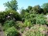 Croome Landscape Park 008 (640x480)