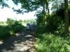 Croome Landscape Park 021 (640x480)