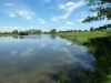 Croome Landscape Park 028 (640x480)