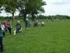 Croome Landscape Park 036 (640x480)
