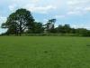 Croome Landscape Park 037 (640x480)