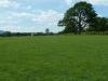 Croome Landscape Park 038 (640x480)