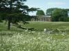 Croome Landscape Park 050 (640x480)
