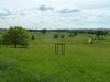 Croome Landscape Park 053 (640x480)
