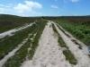 Greenlands Farm 012 (640x480)