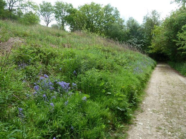 Herefordshire Ridgeway 019 (640x480)