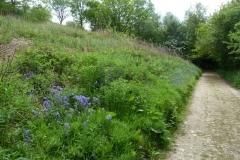 2014 Herefordshire Ridgeway