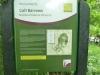 Leighton Moss 098 (640x480)