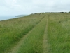 Purbeck Hills, Cliffs & Quarries 046 (640x480)