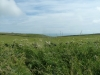 Purbeck Hills, Cliffs & Quarries 105 (640x480)