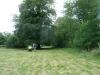 Savernake Forest 001 (800x600)