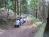 Tamar Trails South 040 (1024x768)