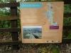 Tamar Trails South 043 (1024x768)
