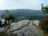 Tamar Trails South 044 (1024x768)