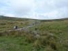 Tyrwhitt Trail 012 (1024x768)